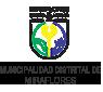 muniMiraflores1